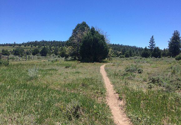 Biking Norwood's Thunder Trails